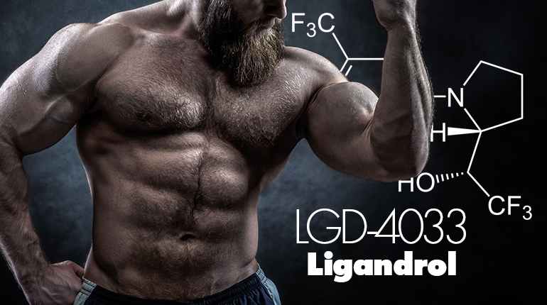 Ligandrol (LGD-4033) Review